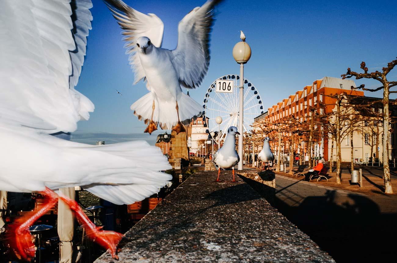 street photography deutschland max slobodda